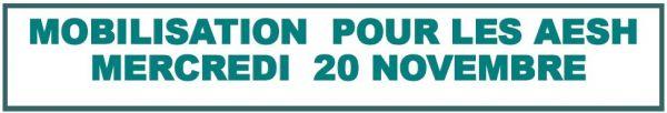 2019-11-20_AESH_Mobilisation